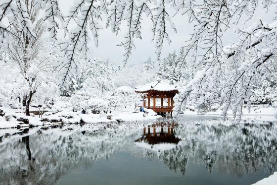 snow_01b