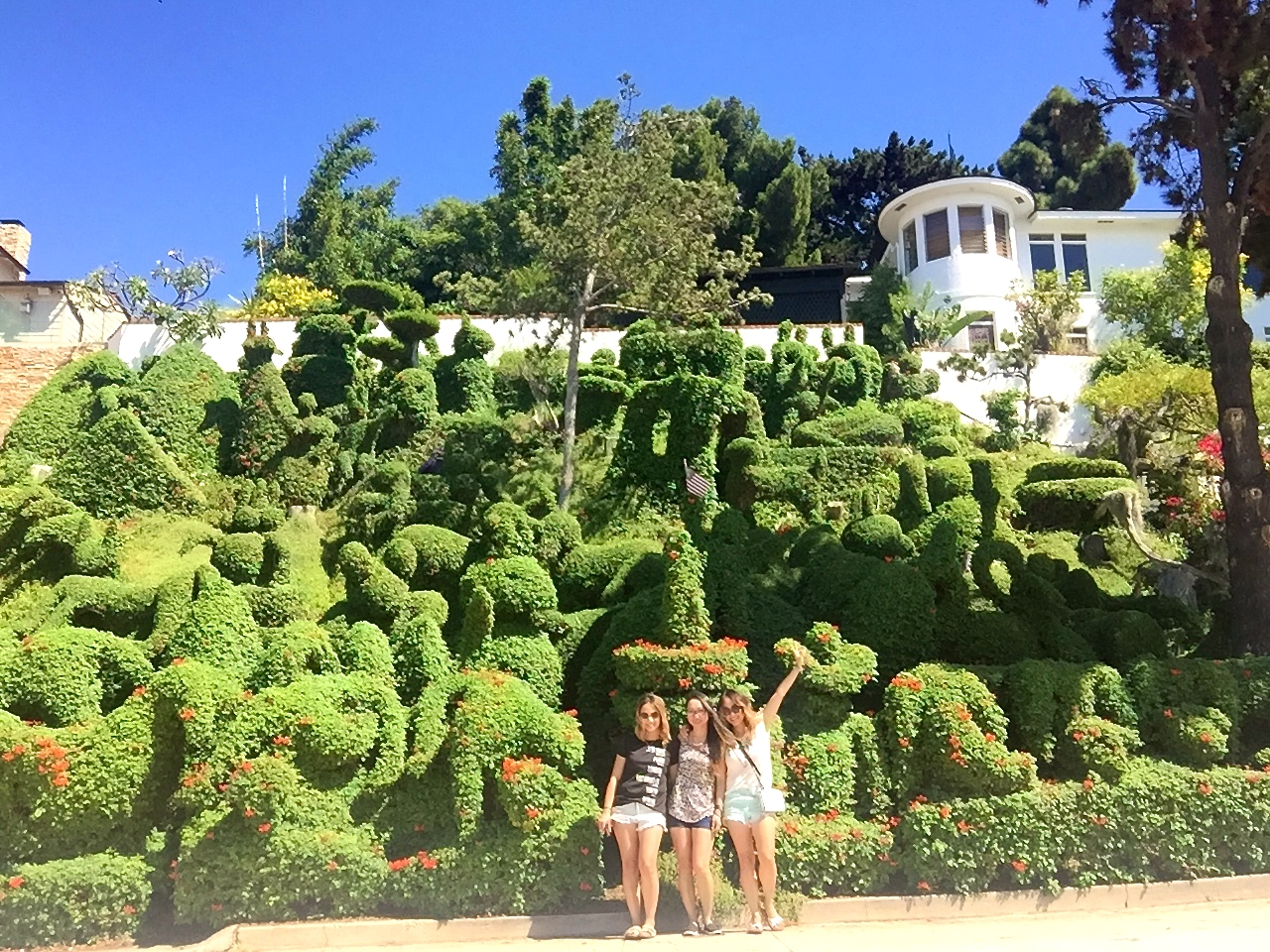 HARPER\'S TOPIARY GARDEN | caring for camille