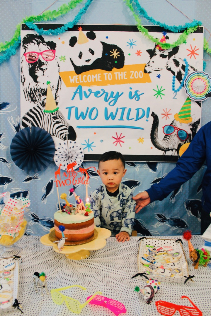 WELCOME TO THE ZOO | AVERY IS TWO!